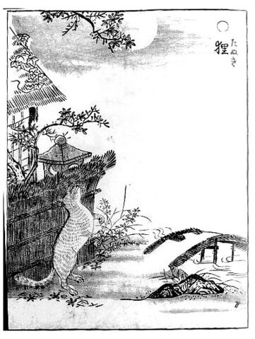 File:Tanuki-sekien.jpg
