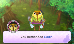 Automatically befriended Cadin