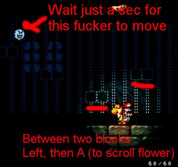 2-4 flower setup