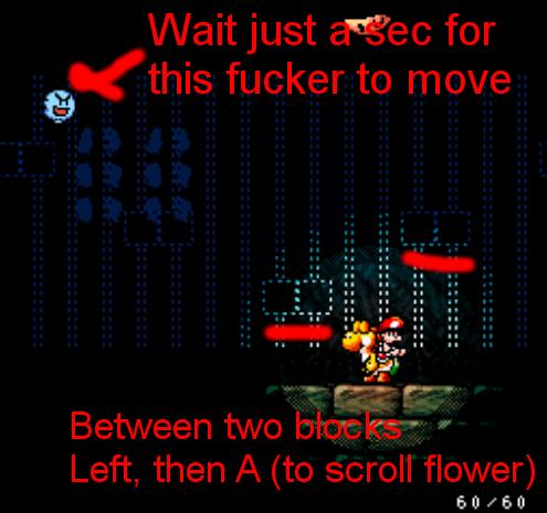 File:2-4 flower setup.png