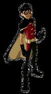 Robin model