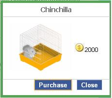 File:Chinchilla.JPG