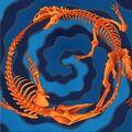FossilFusion-GX04-EN-VG.jpg