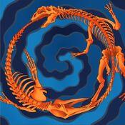 FossilFusion-GX04-EN-VG