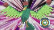 BirdofRoses-JP-Anime-5D-NC