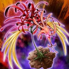 PhoenixianClusterAmaryllis-TF04-JP-VG.png