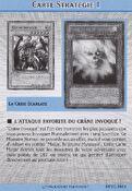 StrategyCard1-DPYG-FR