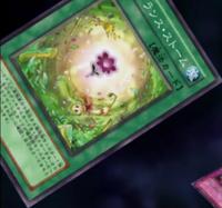 FragranceStorm-JP-Anime-5D