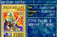 CelticGuardian-ROD-FR-VG