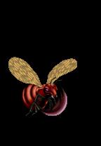 File:Bladefly-WC10-EN-VG-NC.png