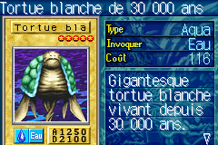 File:30000YearWhiteTurtle-ROD-FR-VG.png