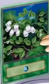 InsectGarden-EN-Anime-GX