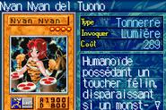 ThunderNyanNyan-ROD-FR-VG