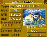 AquaMadoor-DOR-EN-VG