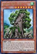 SylvanSagequoia-PRIO-KR-R-1E