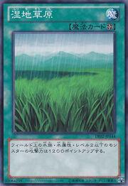 Wetlands-DE02-JP-C