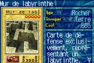 LabyrinthWall-ROD-FR-VG