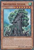 SylvanSagequoia-PRIO-FR-UR-1E