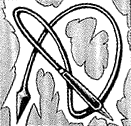 ElectroWhip-JP-Manga-DM-CA