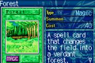 Forest-ROD-EN-VG