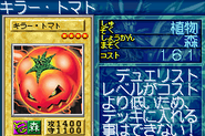 MysticTomato-GB8-JP-VG