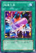UltraEvolutionPill-307-JP-C