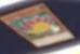File:DoodleBeastStego-JP-Anime-AV.png