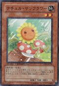 NaturiaSunflower-DT05-JP-DNPR-DT