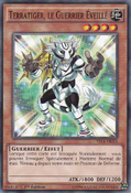 TerratigertheEmpoweredWarrior-YS14-FR-C-1E