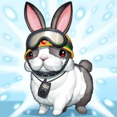 """""""Rescue Rabbit"""""""