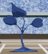 IvyToken-JP-Anime-5D-NC