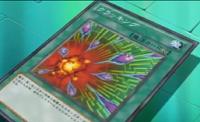 Cracking-JP-Anime-ZX