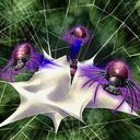 SpiderToken-TF05-JP-VG