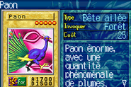 Peacock-ROD-FR-VG