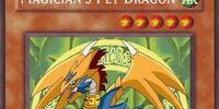 Magician's Pet Dragon