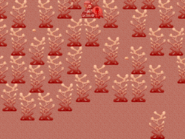 2kki-redwater