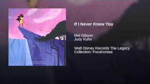If I Never Knew You
