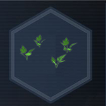 Plant 26
