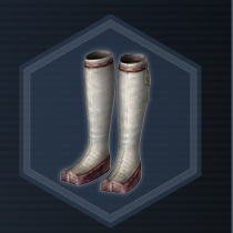 Flag boots P