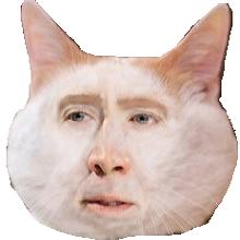 File:Nicolas Cat.png