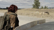 ZNation gallery 312Recap 24