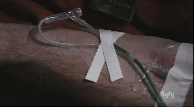 File:Vaccine nz1.jpg