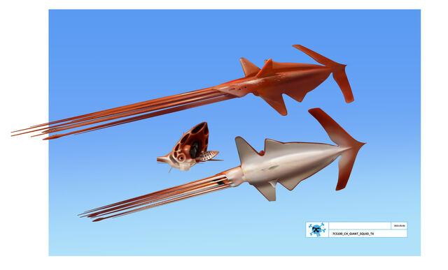File:Sea Monster Squid concept art.jpg