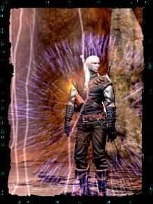 Scenes Geralt Alzurs shield