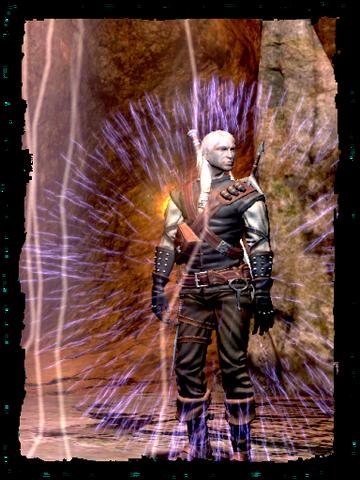Soubor:Scenes Geralt Alzurs shield.png