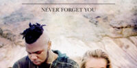 Never Forget You