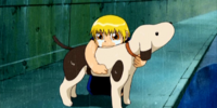 The Great Mamodo Battle