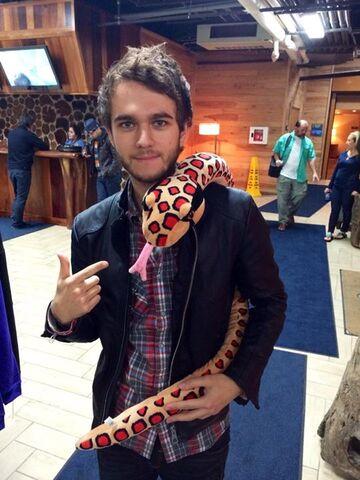 File:Zedd and a toy snake.jpg