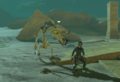 Breath of the Wild Lizalfos Stalizalfos & Stalink (Radiant Armor Set).png