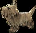 Dog (Majora's Mask).png